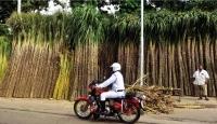 Indian sugar industry is posting sweet export numbers