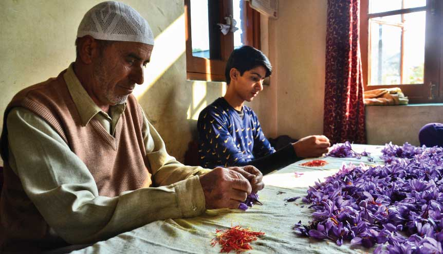 Huge untapped economic potential of J&K, Ladakh slowly coming to the fore