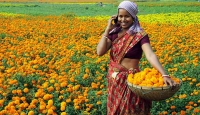 Rural Bharat leads India in digital growth
