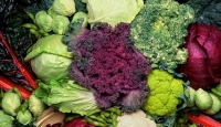 Broccoli, cabbage a cut above for blood vessel health
