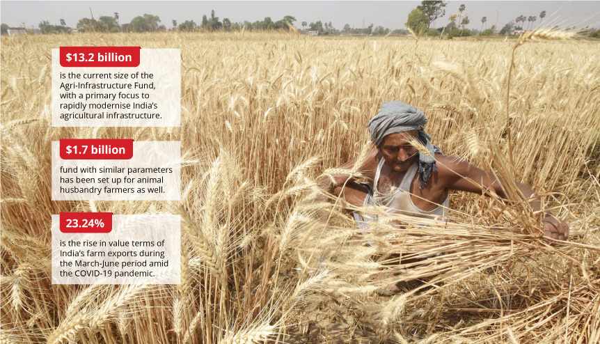 How India's agri-infra fund creates a bold future for farmers and entrepreneurs