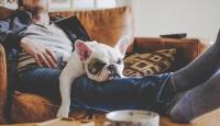 Laziness makes chronic pain management tougher Study