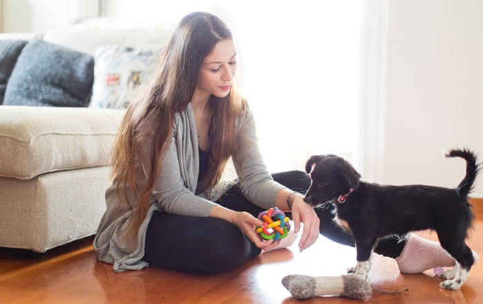 Having a pet could reduce psychological lockdown stress